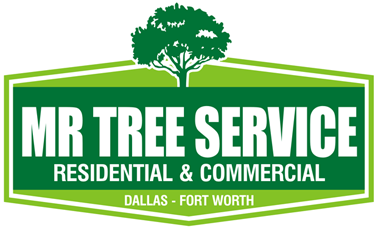 MR TREE SERVICE TX